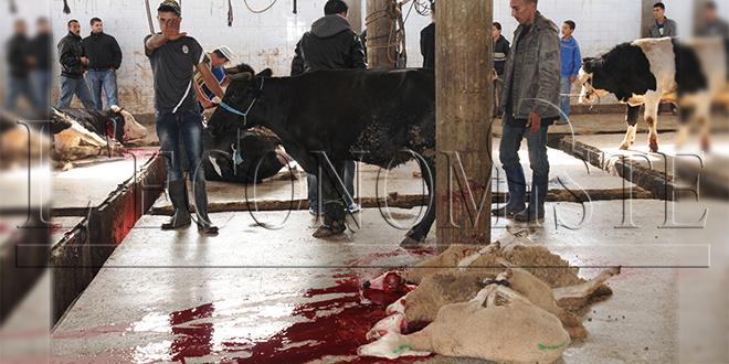 Abattoirs: les vétérinaires s'inquiète de l'état sanitaire actuel
