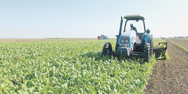 Produits agricoles : Un gros projet validé pour Bouknadel
