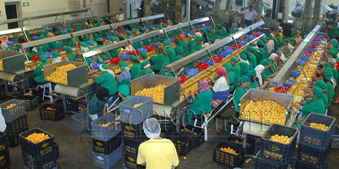 Agroalimentaire : L'export toujours à la traîne