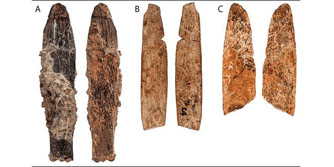 Rabat : Découverte d'un outil en os d'animaux vieux de 90.000 ans