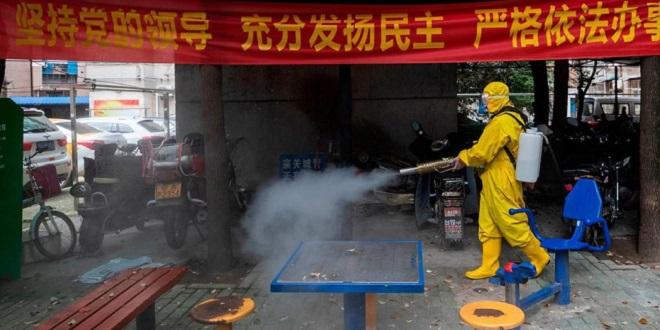 Les experts de l'OMS enfin sur le terrain à Wuhan — Coronavirus