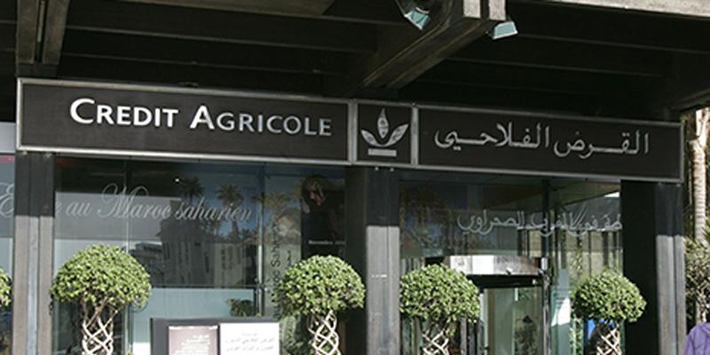 Récolte céréalière : CAM lance une ligne de financement
