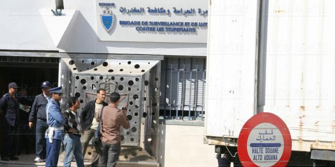 Oujda: La Douane met en échec le trafic de plus de 1.700 chardonnerets