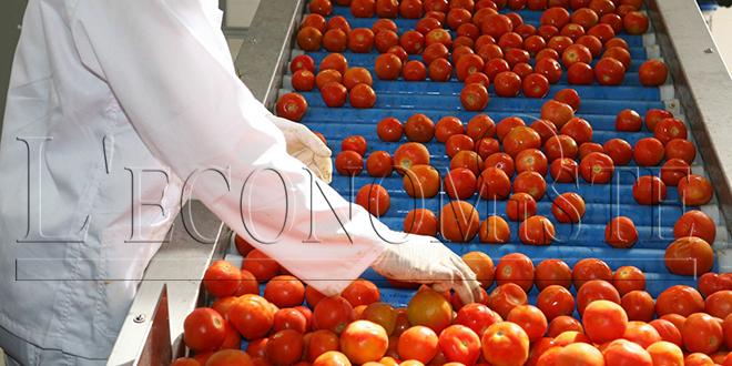 Légumes : Hausse des exportations vers l'UE