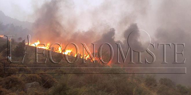 Lutte contre les incendies de forêts: Le Maroc occupe la première position
