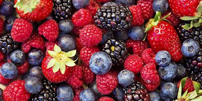 Fruits rouges : Une fédération voit le jour