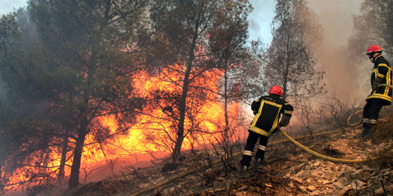 Incendies de forêt : Exercices de simulation à Tétouan