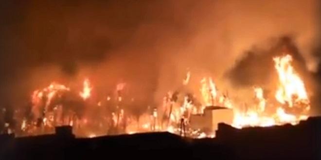 Tata : Les mesures après l'incendie de la palmeraie