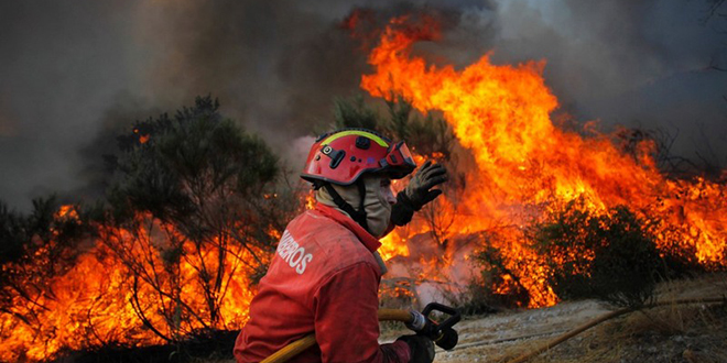 Incendies : Le Portugal sollicite le Maroc