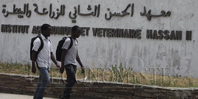 VIDEO - L'IAV forme les cadres guinéens