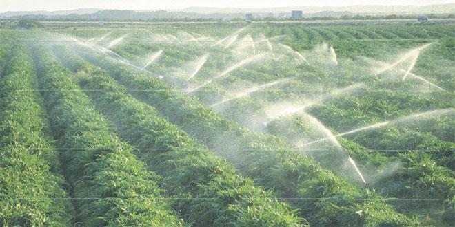 Consommation d'eau: Urgence de nouvelles allocations