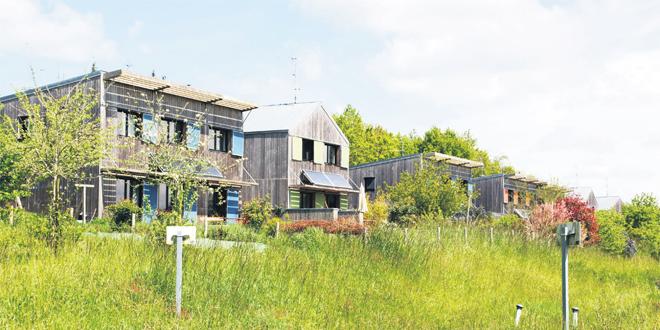 Langouët, petit bourg gaulois 100% écolo