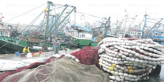 Pêche maritime: Le gouvernement veut serrer la vis