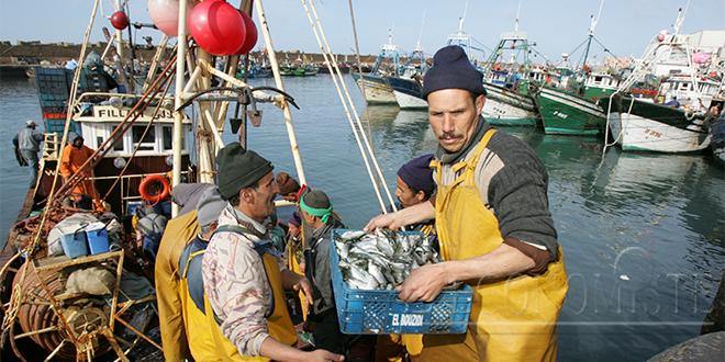 Pêche : Les prises baissent, mais pas la valeur
