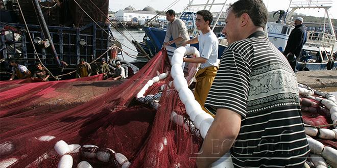 Pêche : L'activité stagne en 2018