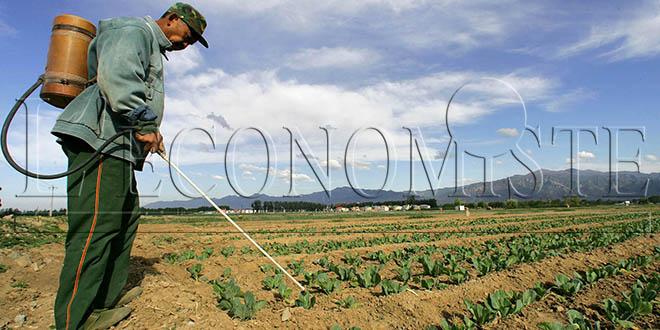 Décès par intoxication : Attention aux pesticides !