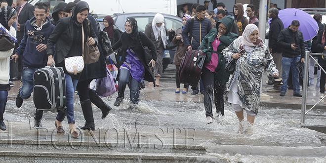Hauteurs des pluies