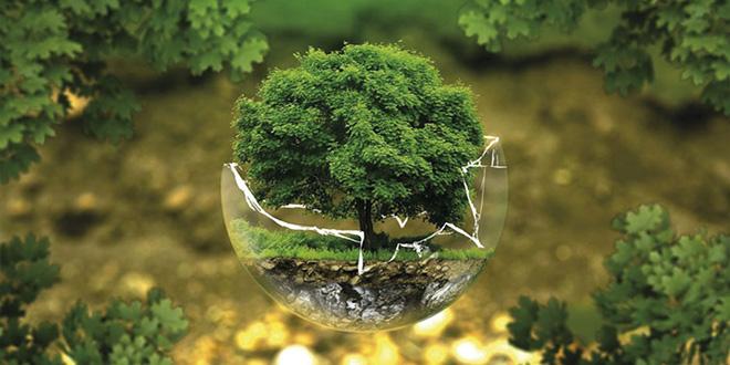 Les porteurs de projets verts sollicités