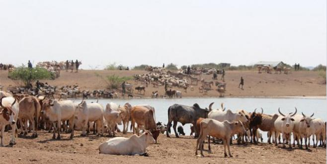Climat : Le Maroc s'engage pour une étude sur le Sahel