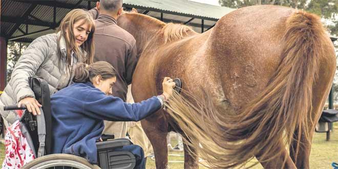 Soigner par le cheval: L'équithérapie, un traitement alternatif