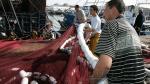 Port de Tan Tan: Les débarquements baissent, la valeur aussi