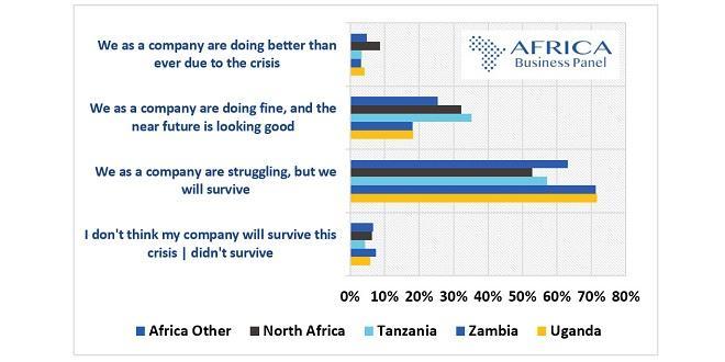 Covid19: 6% des professionnels africains des affaires pessimistes