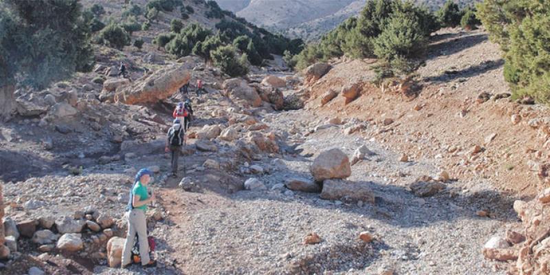 Aït Bougmez: Deux courses en pleine nature pour promouvoir cette «Vallée Heureuse»