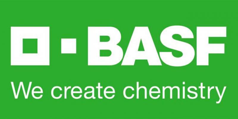 Automobile: BASF s'offre un gros marché chez PSA