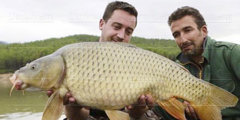 Lac du barrage Bablouta, pour les amoureux du black-bass et de la nature