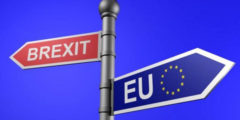 Brexit: Nouveau cycle de négociations à Bruxelles