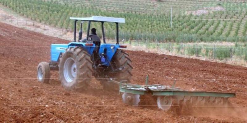Agriculture: Une nouvelle stratégie se prépare
