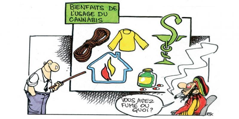 Cannabis: La piste de la légalisation se précise