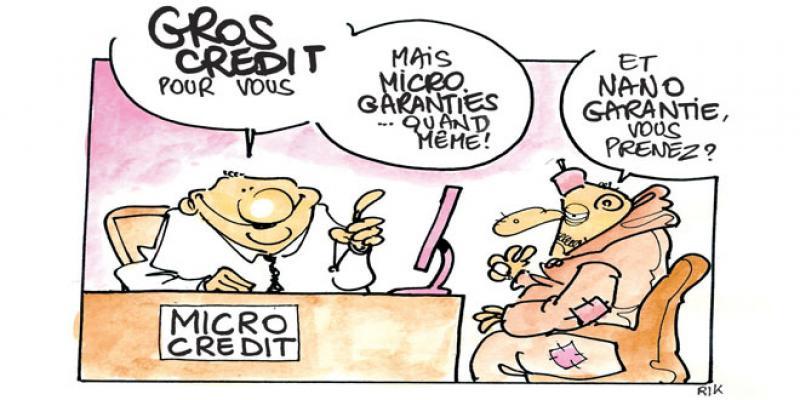 Financement: Le microcrédit veut changer d'échelle
