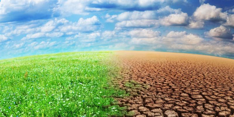 Lutte contre le changement climatique: Ça se finance!