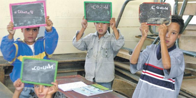 Conseil national des langues: La difficile généralisation de l'amazigh