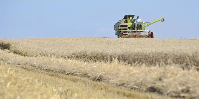 FAO: Les prix des denrées alimentaires au plus bas