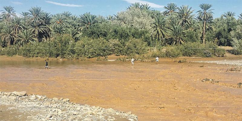 Drâa Tafilalet: Comment faire face aux crues et aux inondations?