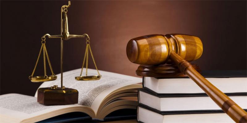 L'accès au droit a ses canards boiteux