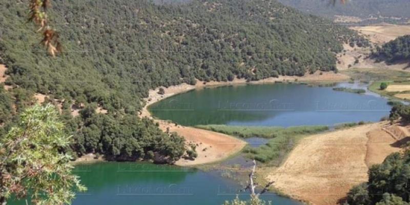 Eaux et forêts: Six millions d'hectares immatriculés