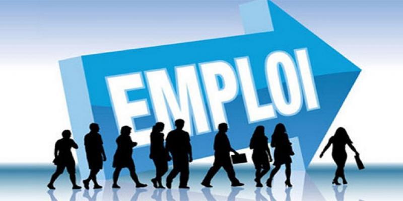 Marché du travail: Plein emploi dans la campagne, «plein chômage» en ville