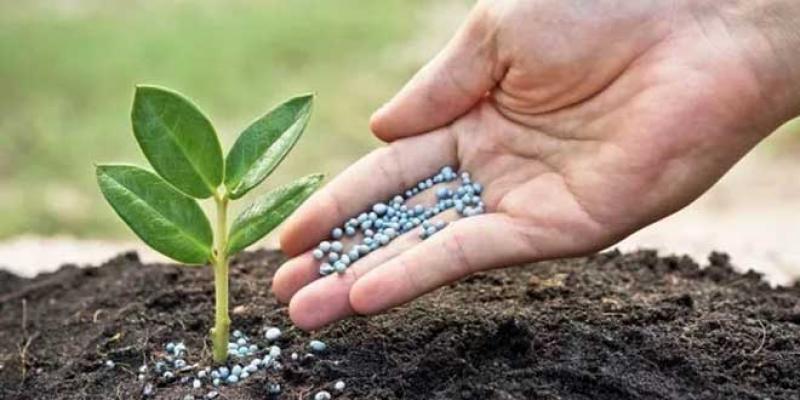 Engrais: OCP acquiert 20% de Fertinagro Biotech
