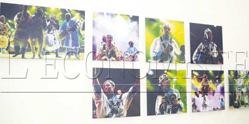 Le festival Gnaoua sous l'objectif d'un passionné