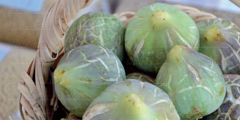 Berkane veut cultiver plus de figues