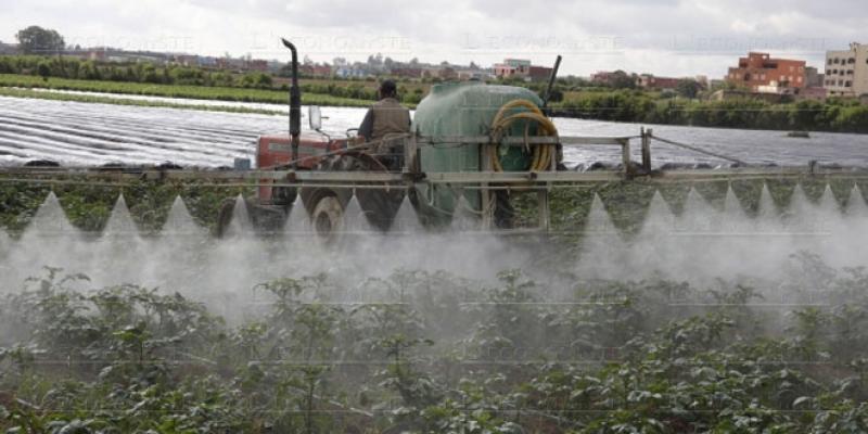Fiscalité agricole: Et si l'on testait le régime forfaitaire