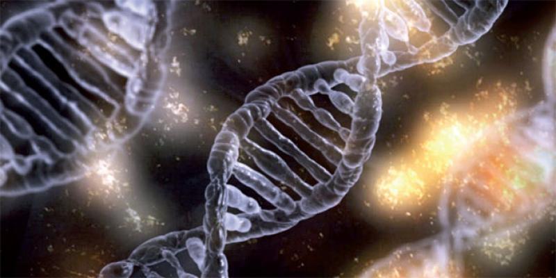 Intelligence artificielle: Un atout pour vaincre le cancer, cet ennemi ultra-malin