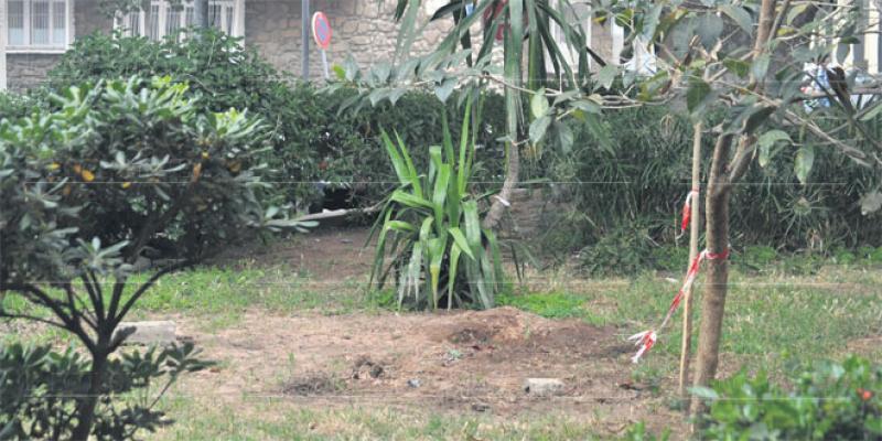 Le jardin de Gauthier sauvé?
