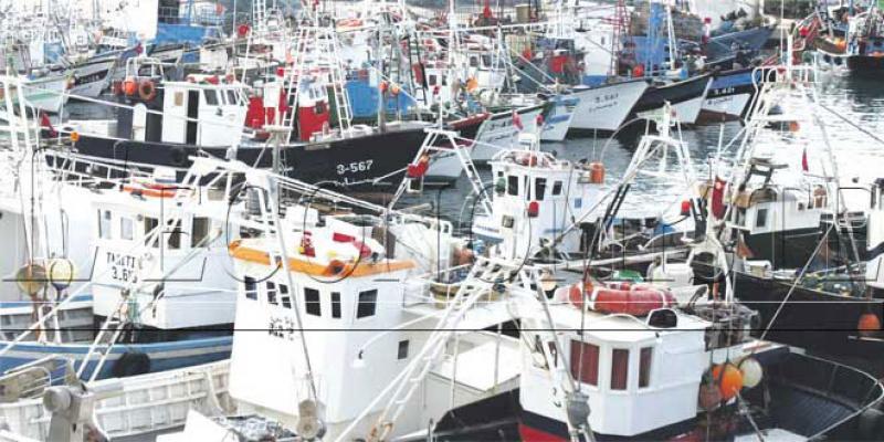 Accord de pêche Maroc-UE: Les provinces du Sud, grandes gagnantes