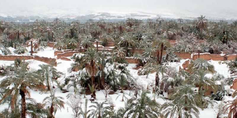Du Moyen Atlas aux dunes de Merzouga, l'exceptionnel hiver sous le froid et la neige