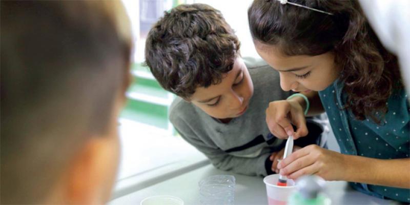 NoBox Lab: La startup qui fait redécouvrir les sciences avec le jeu