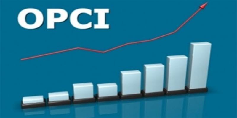 OPCI: Un régime fiscal sur mesure